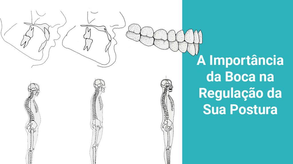 importancia-boca-regulacao-postura-holodontia